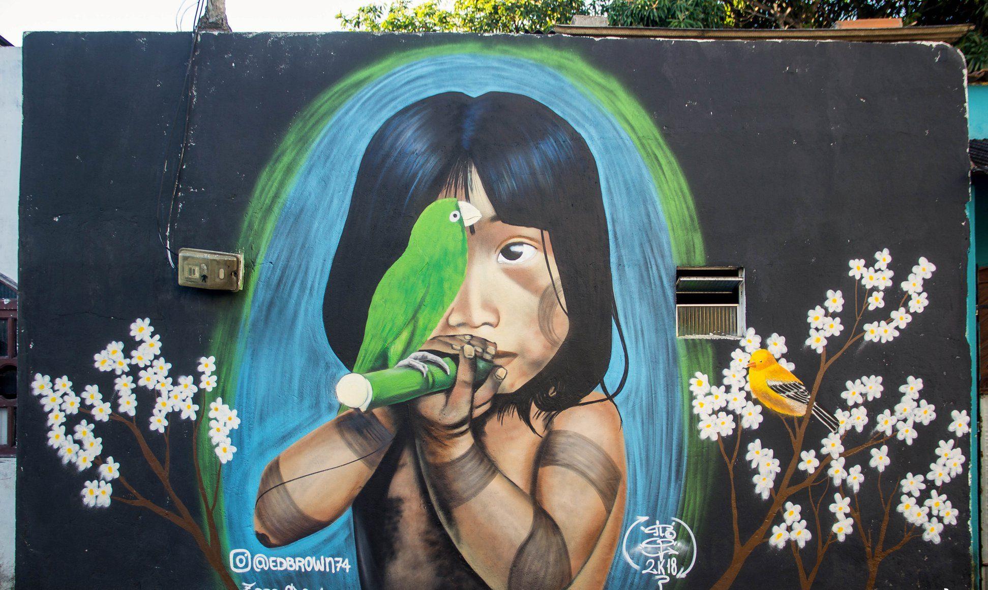 Grafite Feu Rosa
