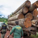 A (péssima) imagem do Brasil hoje no mundo. Foto: Vinícius Mendonça/Ibama
