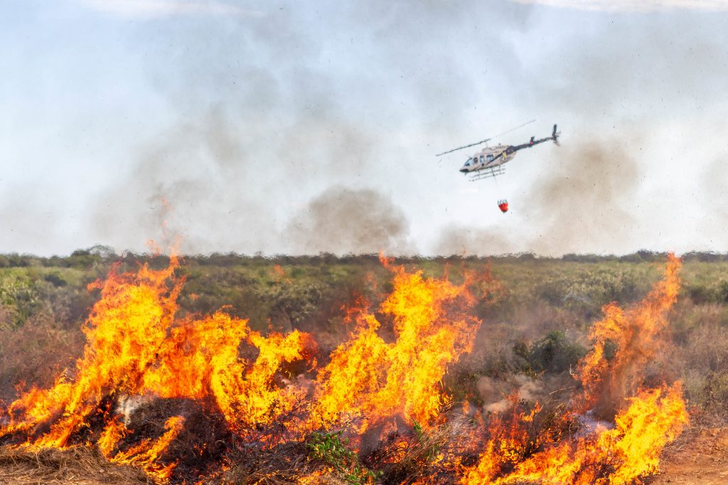 Pantanal tem maior número de incêndios para outubro em 17 anos. Foto: Vinícius Mendonça/Ibama