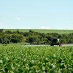 Os padrões que o mundo exige do nosso agronegócio. Foto: Vitor Dutra Kaosnoff/Pixabay