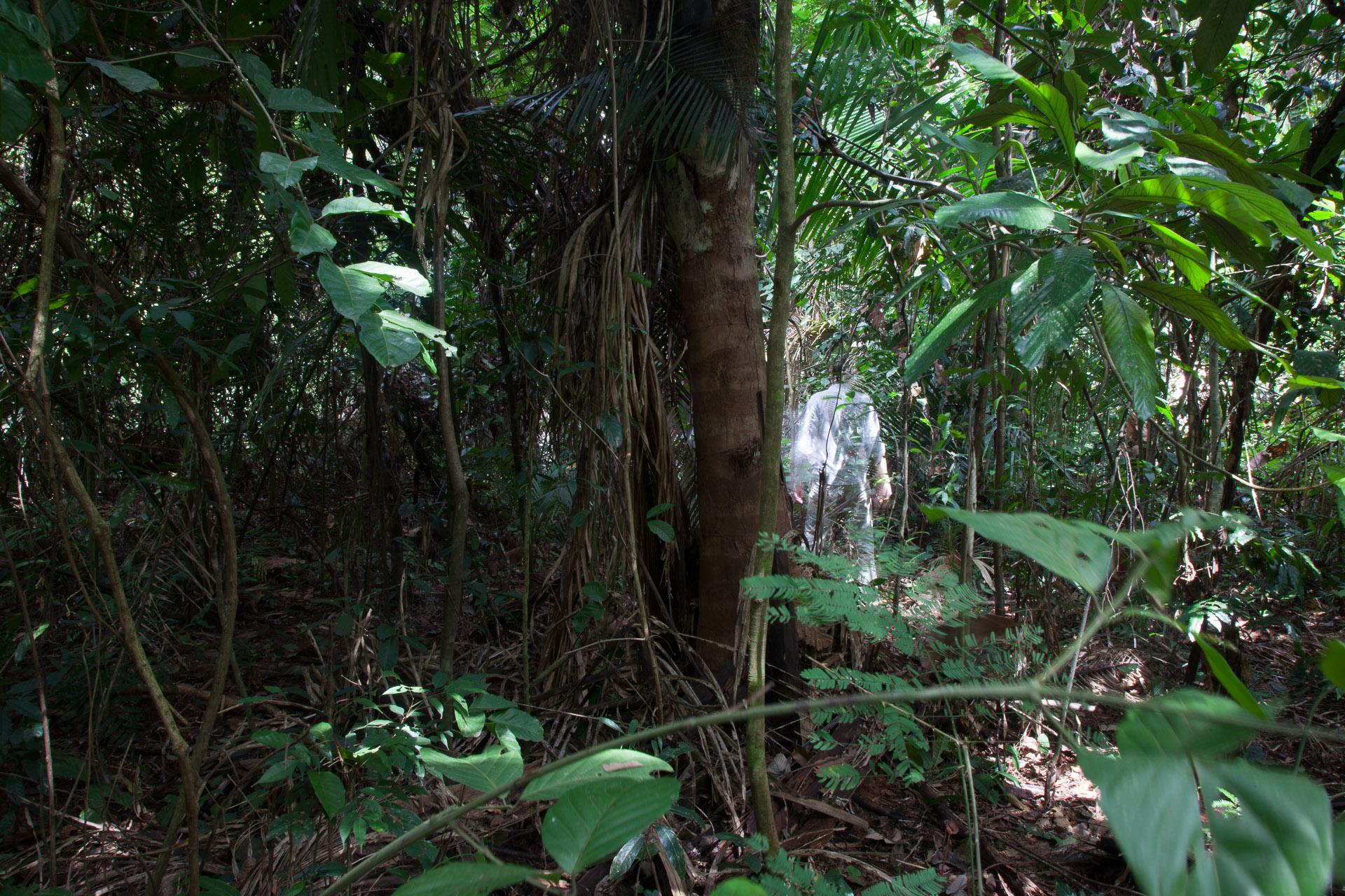 """""""Autorretratos Amazônia"""" mostra a diversidade da floresta. Foto: Miro Soares"""