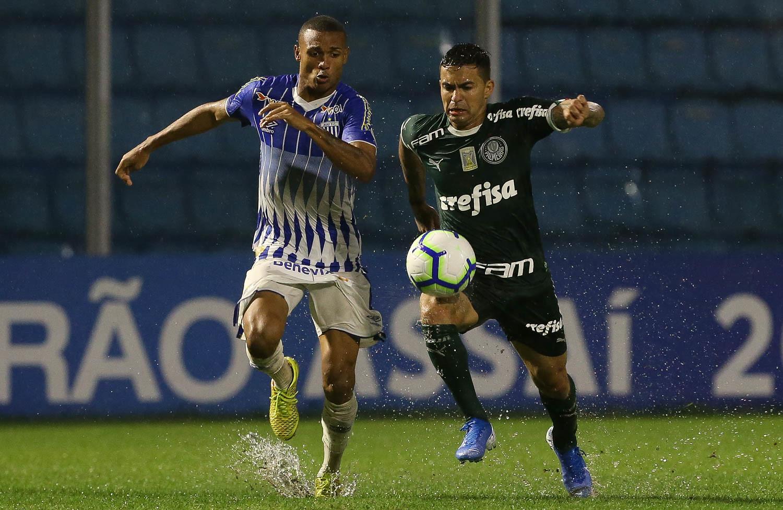 O jogador Dudu, do Palmeiras, disputa bola com o jogador Goulart, do Avaí, sob forte chuva neste domingo. Foto: Sociedade Esportiva Palmeiras Oficial