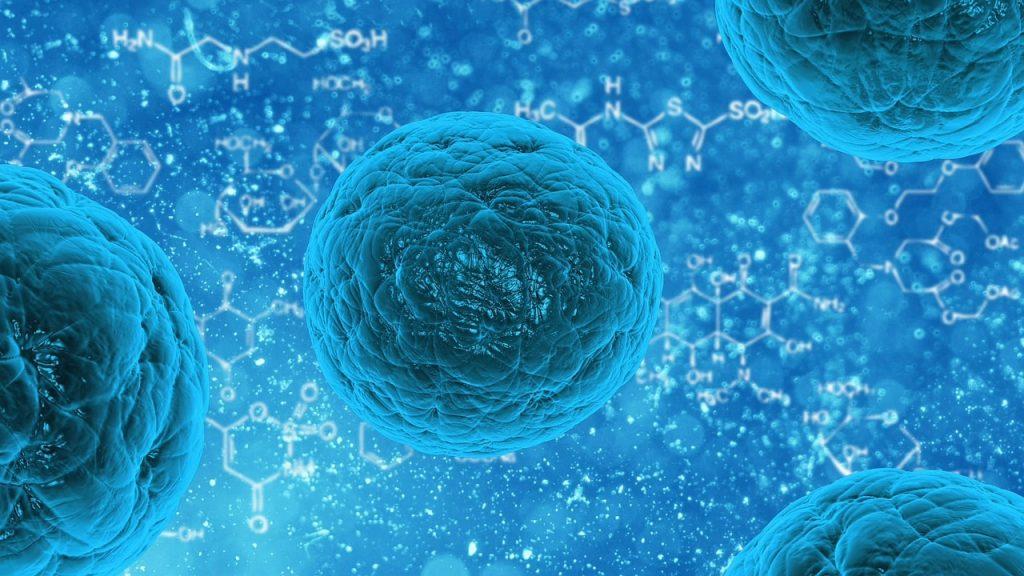 Bactéria, vírus, doença. Foto: Pixabay