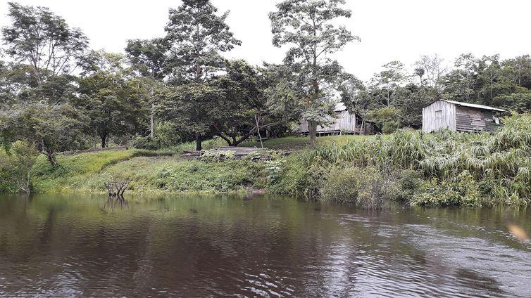 Pesquisa descobre ilhas construídas por indígenas na Amazônia. Foto: Márcio Amaral/Instituto Mamirauá