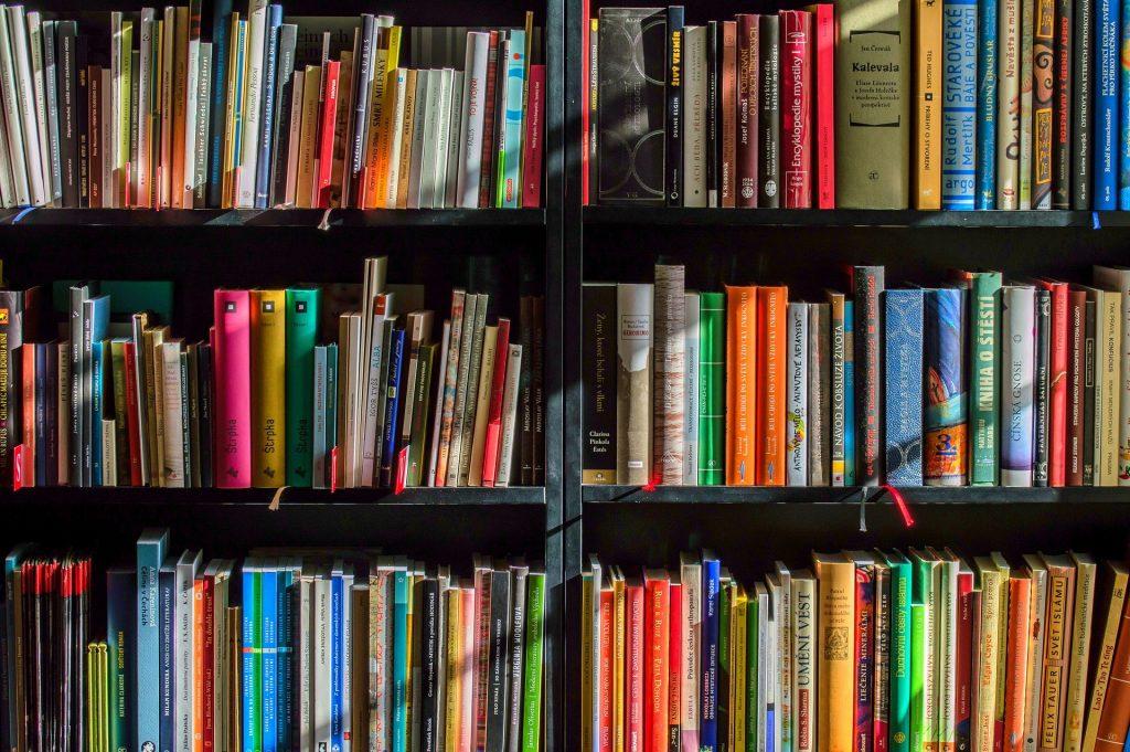 7 livros estão disponíveis de graça para os leitores capixabas. Foto: Pixabay
