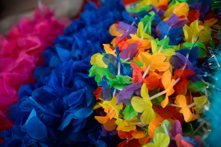 Adereços de carnaval. Foto: Tomaz Silva/Agência Brasil