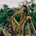 Capixaba Rutzpell cria bike de madeira. Foto: Reprodução