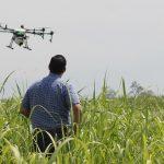 Agricultura digital e as decisões com base em (milhões) de dados. Foto: Pixabay