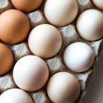 Inovação: ovo na versão plant based ou vegano. Foto: Pixabay