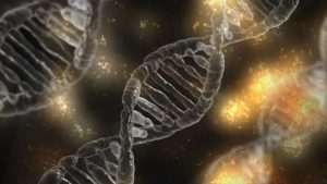Exame de DNA. Foto: Pixabay