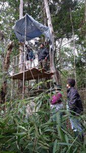Equipe no monitoramento de ninho. Foto: Marcelo Renan